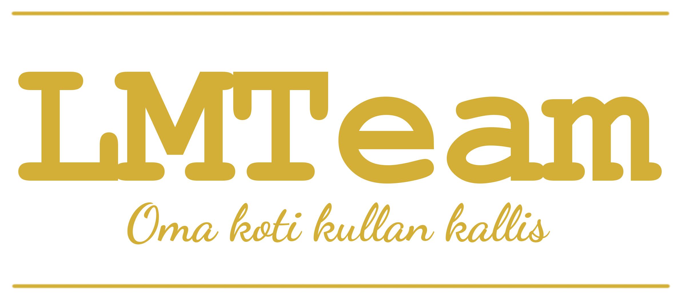 LMTeam